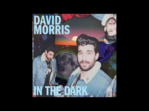 "David Morris - ""In The Dark"" (Official Audio)"