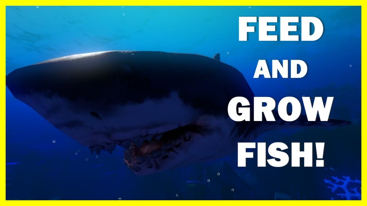 Eat fish grow big feed and grow ep1 youtube for Fish eat and grow