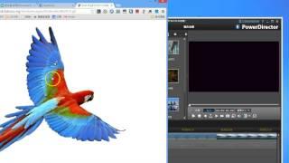 [威導11]教學104:如何找尋有透明背景的圖片,匯入威力導演使用