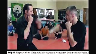 Юрий Кормушин. Парирование ударов в условиях боя и самообороны.