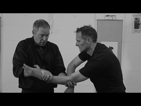 Wing Chun Kung Fu Chi Sau Inside Attacks.