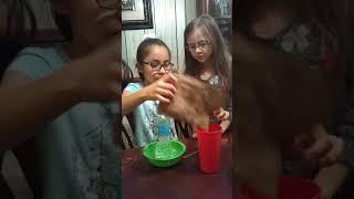 Cheetah girls 2