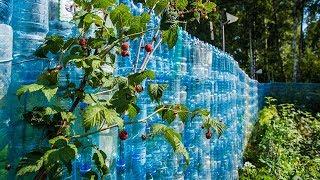 как сделать забор с пластиковых бутылок