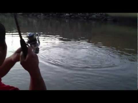 Crazy Big Oklahoma Gar Fishing Catch Part I - 247 OutDoor Addiction