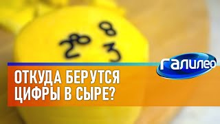 Галилео | Цифры в сыре 🧀[Numbers in cheese]