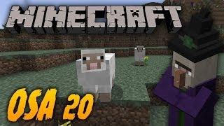 Minecraft - 20 - Lampaita, noitia ja muuta! [HD]