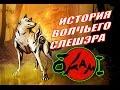 История волчьего слешэра OKAMI