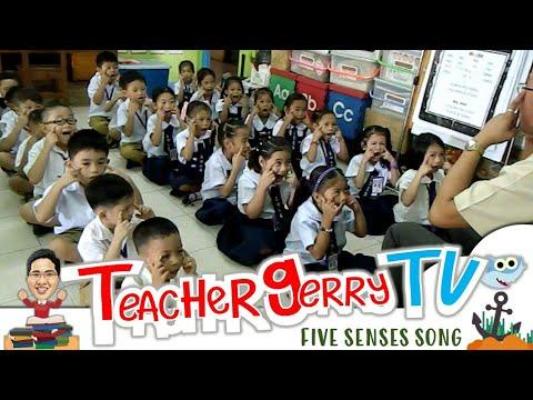 Kinder Song: Five Senses