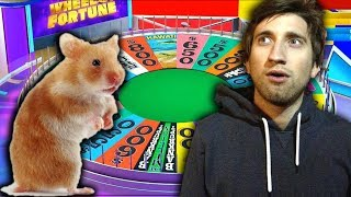 rouletsplay wheel of fortune
