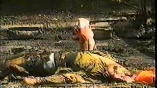 Война в Приднестровье (ПМР)