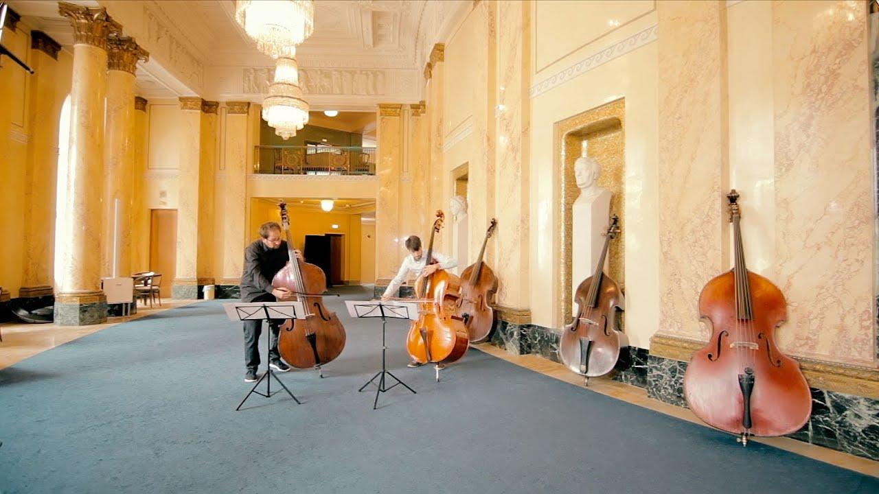 Der Kontrabass - ein Streichinstrument
