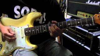 1999 Fender USA American Vintage '62 Stratocaster Mac Garage Bandで...
