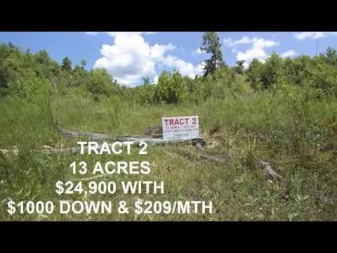 13 ACRES - OWNER FINANCE - $1000 DN & $209/MTH - HOLLADAY, TN - REAL ESTATE FOR SALE