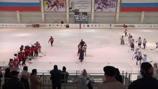 Красная звезда (Краснокамск) : Белые Медведи (Ижевск) 21.04.19