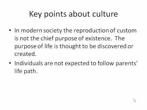 Pre Modern vs. Modern Culture