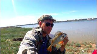 ВОТ ЭТО РЫБАЛКА Тёплым Майским Днём Рыбалка на озере Буйвола