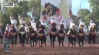 مصر العربية | شاهد فنون الاستعراض بالخيول بالمعرض الدولي للفرس بالمغرب