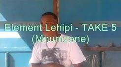 Element Lehipi - Take 5