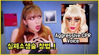 레이디 가가 따라잡기 (feat. 아리아나 그란데)   Lady Gaga Impression (feat. Ariana)