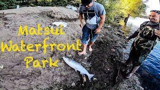 Sacramento river salmon fishing (epic day)