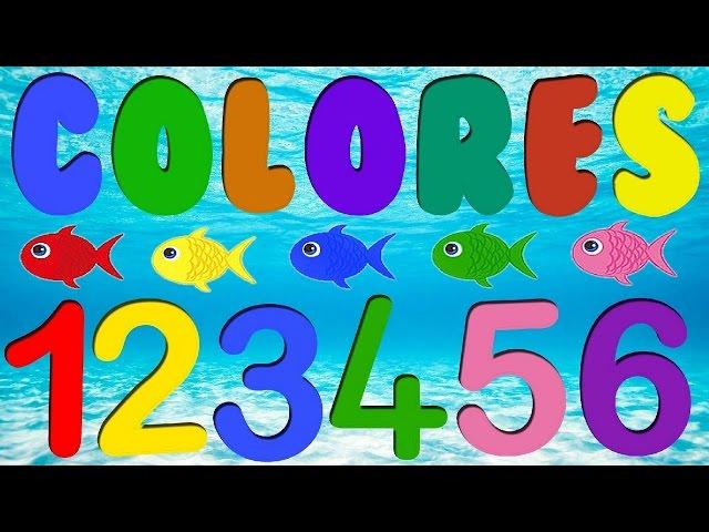 los peces de colores