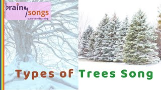 Deciduous Trees  / BrainySongs - Songs for learning Science and English