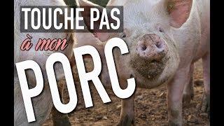 TOUCHE PAS À MON PORC
