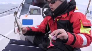 Рыбалка в Норвегии 2013 (Рекордны 195 кг Палтус)