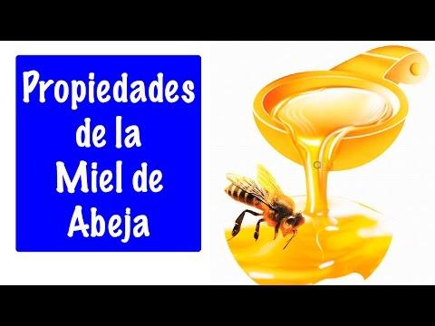 David Duarte - Beneficios de la Miel de Abeja - Ethel S
