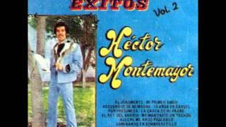 RECUERDOS DE MI MADRE - HECTOR MONTEMAYOR