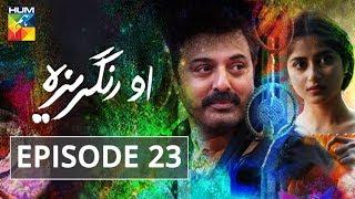 O Rungreza Episode #23 HUM TV Drama