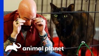 Jackson Gets Emotional At Cat's MindBlowing Transformation | My Cat From Hell