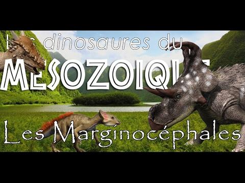 Les marginocephales - Paléontologie - Simplex paléo