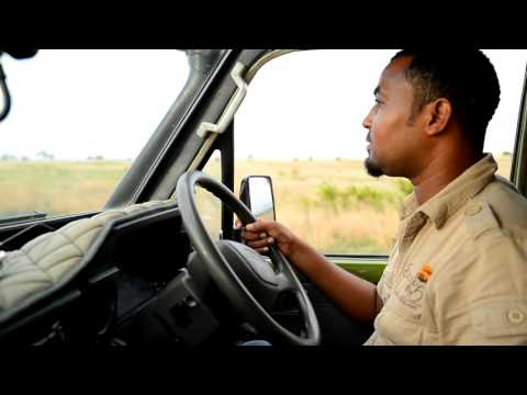 Tanzania Safari Big 5 Guide
