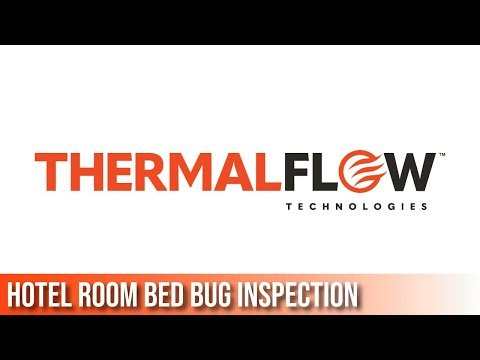 Inspecting For Bed Bugs In Hotels