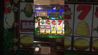 Bonus Fowl Play Story Slot Machine