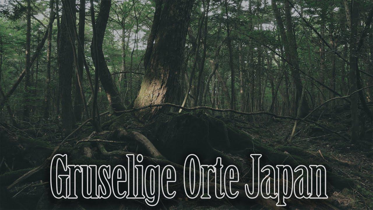 Japan Selbstmordwald