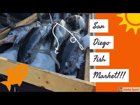 [Vlog] San Diego Downtown Fish Market