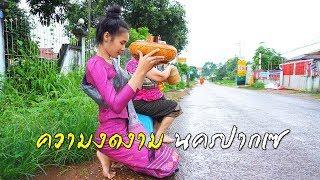 ติดฝนในลาวเอาชีวิตรอดด้วยอาหารรายทาง EP.41 ความงดงามนครปากเซ