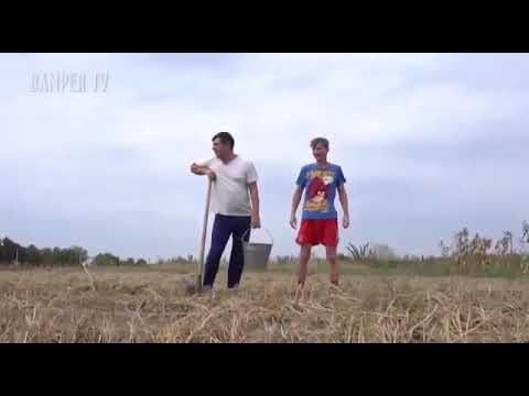Как хохлы копали картошку видео