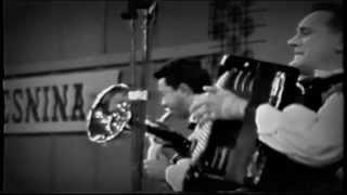 Ansambel bratov Avsenik - Veseli svatje/Lustige Hochzeit  (1967)