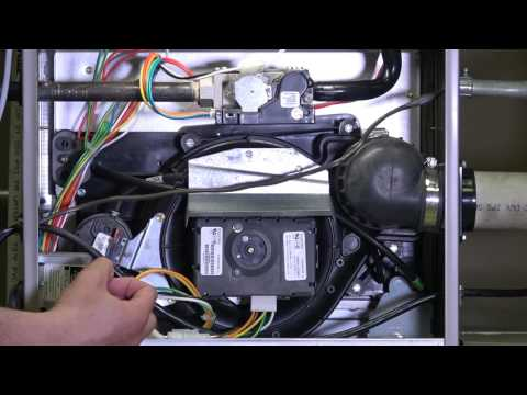 Gas Furnace: Component Identification (1 of 2)