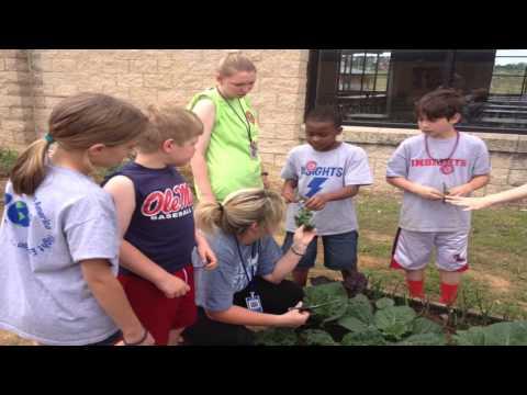 Food for Thought Garden --Della Davidson Elementary School