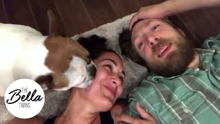 Total Bellas reaction on the floor with non-stop licking from Josie Bella!