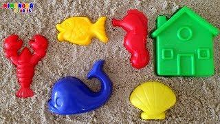 Vamos a jugar ✨  Donde esta? Donde esta? Aqui esta!! Animales Acuaticos, Formas, Colores para niños thumbnail
