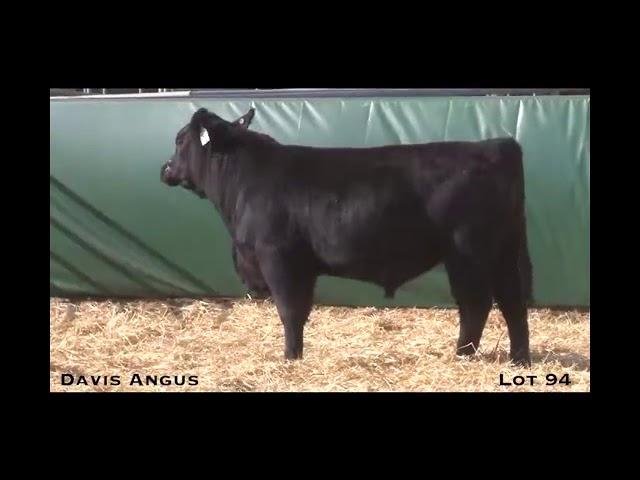 Davis Angus Lot 94