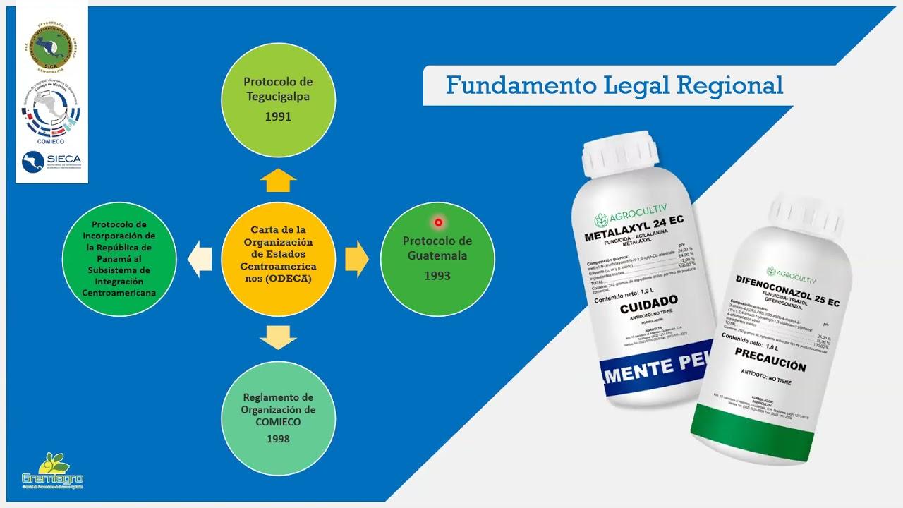 Download Etiquetado de Plaguicidas y Regulaciones Regionales EFAC 09042021