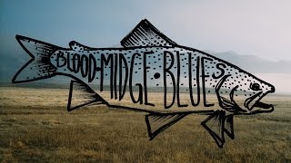 Blood Midge Blues