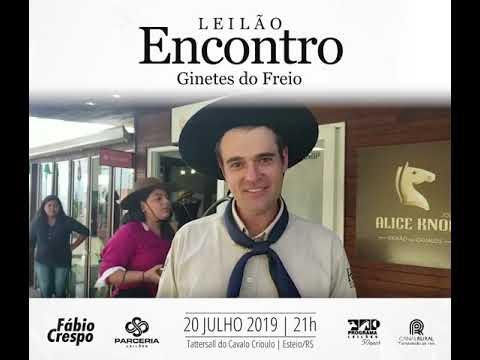 Guto Freire