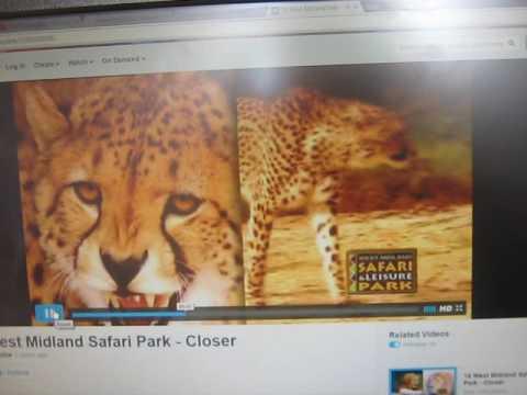 West Midland Safari Park TV Advert